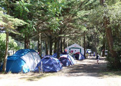 photo12-emplacements-camping-la-gachere-camping-olonne-sur-mer